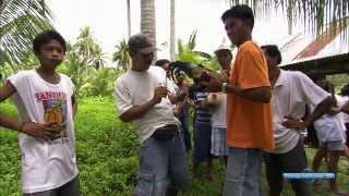 Смотреть онлайн Невероятное путешествие по Филиппинам