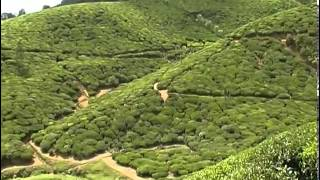 Смотреть онлайн Страна Звездного Лотоса - Шри-Ланка