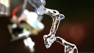Смотреть онлайн Удивительный эксперимент с водой