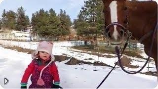 Смотреть онлайн Ребенок и лошадь