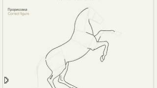 Смотреть онлайн Как правильно рисовать лошадь