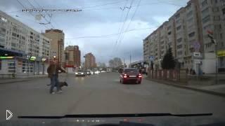 Смотреть онлайн Странный пешеход-трюкач на дороге со своей собакой