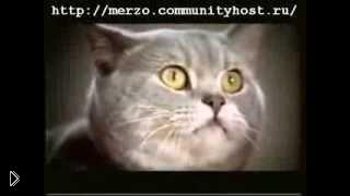 Смотреть онлайн Вискас - мыши могут творить что угодно