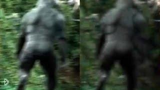Смотреть онлайн Снежный человек в лесу