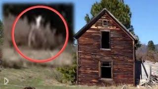 Реальные кадры: инопланетяне среди нас - Видео онлайн
