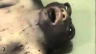 Смотреть онлайн Женщина родила мутанта с головой непонятного существа