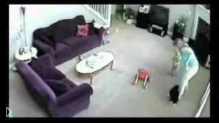 Смотреть онлайн Кошка нападает на женщину из-за ребенка