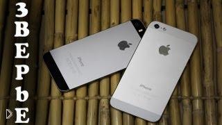Смотреть онлайн Разница между Айфоном 5S и 5 Айфоном