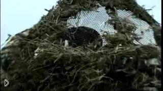 Смотреть онлайн Весенняя охота на дикого гуся с чучелом