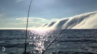 Смотреть онлайн Волна тумана в штате Мичиган 21 мая 2014