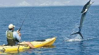 Смотреть онлайн Прикольная рыбалка