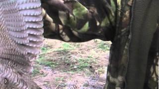Смотреть онлайн Весенняя охота на вальдшнепа