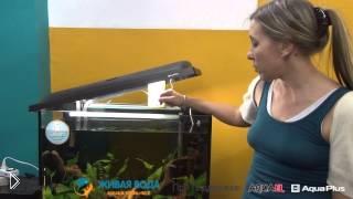 Смотреть онлайн Как правильно чистить аквариум