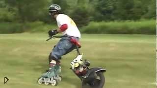 Смотреть онлайн По траве на роликах с моторчиком
