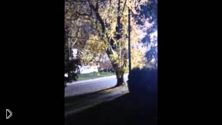 Смотреть онлайн Яркий электрический шар на уличных проводах