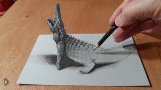 Смотреть онлайн Как нарисовать 3d крокодила карандашом и маркером