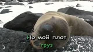 Караоке Юрий Лоза - Плот - Видео онлайн