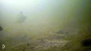 Смотреть онлайн Зимняя рыбалка окуня на балансир