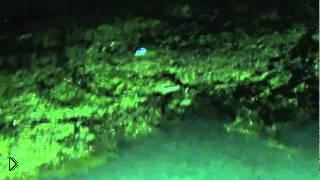 Смотреть онлайн Ночная рыбалка с блочным луком