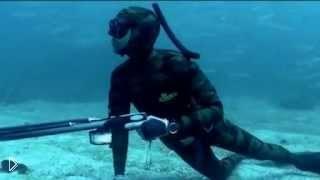 Смотреть онлайн Крутой ролик о морской подводной охоте