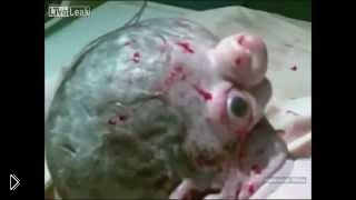 Смотреть онлайн Новорожденный ребенок уродец с зеленой головой