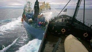 Смотреть онлайн Подборка аварий и фейлов с морским транспортом
