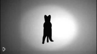 Смотреть онлайн Оптическая иллюзия: в какую сторону вращается кот?