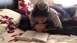 Смотреть онлайн Котенок любит читать книги