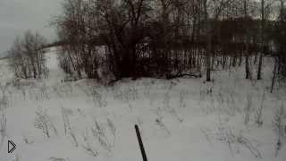 Смотреть онлайн Зимняя охота на зайца