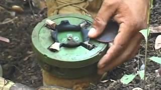 Смотреть онлайн В Камбодже разминировали мину