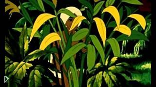 Смотреть онлайн Мультфильм «Золотая антилопа», 1954