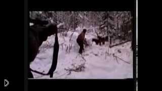 Смотреть онлайн Зимняя охота на медведя в берлоге с лайками