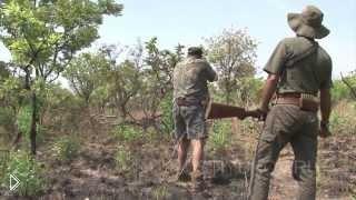 Смотреть онлайн Сафари русских охотников на юге Африки