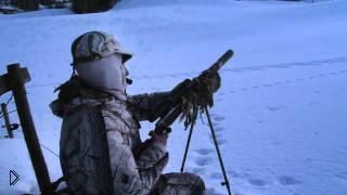 Смотреть онлайн Охота на лису зимой с манком