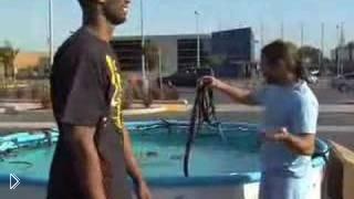 Коби Брайант и Jackass - Видео онлайн