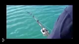 Смотреть онлайн Рыбак поймал касатку на спиннинг