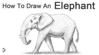 Смотреть онлайн Как поэтапно нарисовать слона крандашом