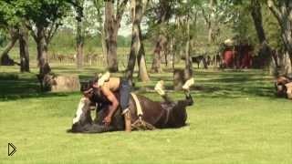 Смотреть онлайн Мужик заколдовал свою лошадь и вытворяет с ней такое...