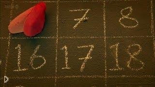Смотреть онлайн Документальный фильм «Тайный код жизни: Числа»