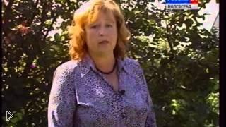 Смотреть онлайн Как правильно посадить малину осенью