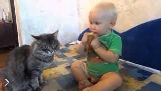 Смотреть онлайн Малыш делит с котом одну булочку