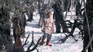 Смотреть онлайн Художественный фильм «Морозко», 1964