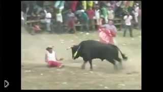 Смотреть онлайн Колумбийский забег с быками обернулся смертью