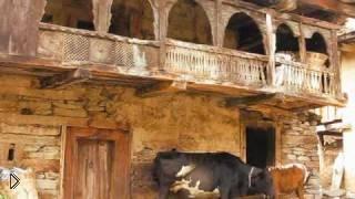 Путешествие по северу Индии - Видео онлайн