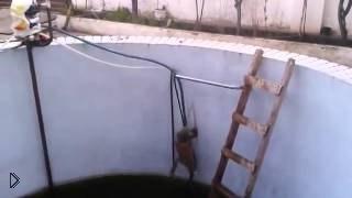 Смотреть онлайн Спасение кота, упавшего в бассейн