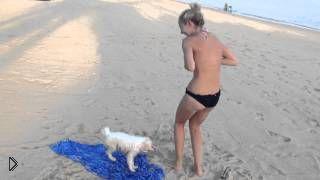 Смотреть онлайн Милый песик снимает купальник с девушки