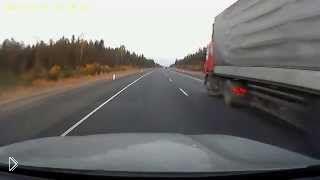 Смотреть онлайн Лось чудом проскочил между машин на дороге