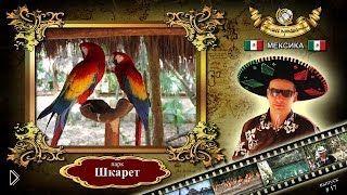 Смотреть онлайн Парк Шкарет на Ривьере Майя, Мексика