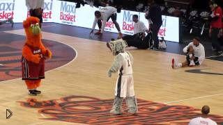 Смотреть онлайн Крутое выступление талисманов баскетбольных команд