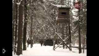 Смотреть онлайн Как охотиться зимой на кабана